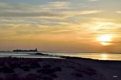 Centinelas del mar (ZAP.M) Tags: naturaleza nature sunset sanctipetri chiclana cdiz andaluca espaa nikon nikond5300 zapm mpazdelcerro flickr
