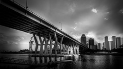 Sheares Bridge (Gerald Ow) Tags: canon eos 5dmkii ef1740mm f4l singapore shearesbridge bw monochrome 1740mm ef black white geraldow ngc 5dmk2 bridge twop