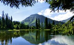 Znitude... (myvalleylil1) Tags: france alpes montagne mountain hautesavoie samoens