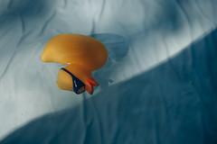 Abtauchen (claudiarndt) Tags: duck rubberduck ente quietschpeente pool water wasser swimming swim summer diving tauchen