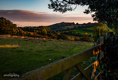 12/31 Up on the Downs (Alex Chilli) Tags: coulsdon surrey farthing downs gate fields rolling hills green sunset sky view vista perspective