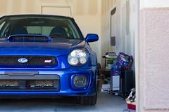 IMG_0370 (rem.0) Tags: subaru subaruwrx subaruwrxsti sti world rally blue boxer engine boxerengine garage tool toolbox impreza subaruimpreza subaruimprezawrx subaruimprezawrxsti wrxsti canon teamcanon canonrebelt2i rebelt2i car cars ilovemysubaru subielife rallycar turbo bov turbocar hood scoop hoodscoop blowoffvalve fog lights foglights bugeye bugeyesubaru fl4t flatfour flatfourengine boxermotor mygarage day light daylight arizona goodyearaz tempe asu arizonastateuniversity intercooler psh rem0 rem remzero remphotography