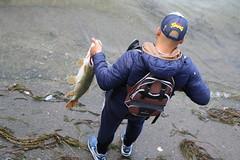 IMG_8809 (gillesdesuisse) Tags: pêche brochet geneva gillesdesuisse gillesdesuissephoto