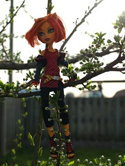 Monster High's Toralei Stripe (Fire Engine Red) Tags: brown canada green nature garden toy spring vines weeds doll essexcounty branches leamington orangehair mattel southwesternontario werecat femaledoll monsterhigh toraleistripe