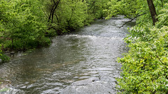 Beargrass Creek (David G Ruth) Tags: park creek nikon ky louisville seneca olmstead beargrass d3200