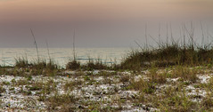 Ocean beyond the dunes (Rick Smotherman) Tags: ocean sky beach gulfofmexico nature water sunrise canon outdoors morninglight spring sand florida overcast 7d destin canon7d