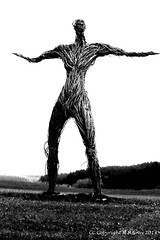 Wickerman (Shug1) Tags: wickerman