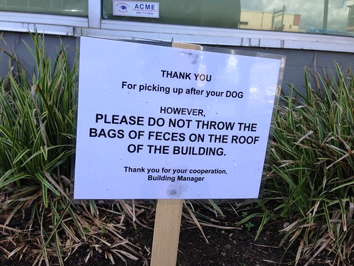 THANK YOU For picking up after your DOG. HOWEVER, PLEASE DO NOT THROW THE BAGS OF FECES ON THE ROOF OF THE BUILDING. Thank you for your cooperation. Building Manager