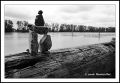 Inukshuk Watching The River  - River District SX4921e (Harris Hui (in search of light)) Tags: harrishui fujixt1 digitalmirrorlesscamera fuji fujifilm vancouver richmond bc canada vancouverdslrshooter mirrorless fujixambassador fujixcamera fujixseries fujix x70 fujix70 fujixcompactcamera blackwhite digitalbw inukshuk stoneart stone watching river riverdistrict vancouvereast