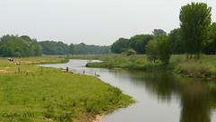 De Regge (Cajaflez) Tags: river rivier rural landelijk cows koeien deregge overijssel thenetherlands meanderen