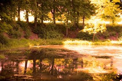 Blairstown, NJ (a2roland) Tags: normanzeba2rolandyahoocoma2roland photo flicker picture pics new jersey state landscape nature wild life nikon camera lens water trees reflection lake pond