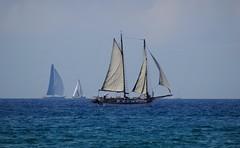 Sailing boat (Hlne_D) Tags: hlned france provencealpesctedazur provence paca var saintcyrsurmer stcyrsurmer stcyrmer leslecques mermditerrane mediterraneansea mditerrane sea mer sailingboat boat bateau voilier aviary
