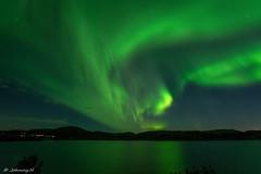 Aurora borealis (JH') Tags: nikon nikond5300 nature northernlights d5300 landscape longexposure exposure water trees stars heaven highcoast auroraborealis aurora borealis summer sky sigma 1020 sweden 2016