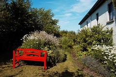 Heatwave (lewist584) Tags: sonynex5r sigma19mmf28dn art sigma lewist584 lieler luxembourg ardennes summer heatwave garden gimp gmic polaroid690 bench flowers