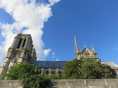 France - Paris - River Seine boat trip - Notre Dame de paris (JulesFoto) Tags: france paris riverseine ledelacit notredame cathedral