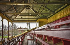 Queen Elizabeth Oval Grandstand (phunnyfotos) Tags: phunnyfotos australia victoria vic bendigo centralvictoria seats emptyseats seat seating kauri timber grandstand spectatorseating architecture interior building 1901 jrrichardson truss trusses view nikon d750 nikond750 corrugatediron castironlace castiron lace lacework tiers tiered louvres mediabox commentarybox bellroof bellshapedroof frieze recreationreserve sportsground football cricket