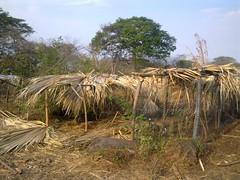 kailyard (Sasha India) Tags:              ometepeisland ometepe nicaragua journey travel             eljardindelavida puntagorda balgue