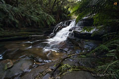 Leura Cascades, Blue Mountains (Nur Ismail Photography) Tags: leuracascades leura bluemountains trekking lush greenery ferns australia touristattractions tourism newsouthwales nsw sony a7rii ilce7rm2 touristattraction touristdestination