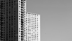 doric apartments, union city (william.kimmerle) Tags: nj new jersey newjersey architecture unioncity bw leica m262 elmar 90mm