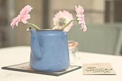 Soft (sonia.sanre) Tags: deco table coffee cafe rosa azul flores pink blue pastel delicado flowers delicate soft