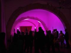 Quinta do Sr da Serra (LuPan59) Tags: lupan59 belas casamento joo rita