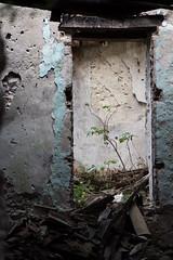 La_terra_che_tremo (Danilo Mazzanti) Tags: danilo danilomazzanti mazzanti wwwdanilomazzantiit fotografia foto fotografo photography photos irpinia romagnanoalmonte terremoto abbandono drammatico tonalit rovine diroccato