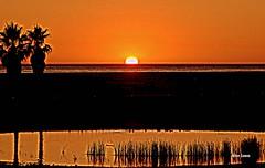Pr do sol (verridrio) Tags: orange pordosol praia figueiradafoz litoral beach plage sony sea ocean mar oceano atlantico atlantique water agua sunset tramonto ocaso serenidade serenity hdr reflexos reflex paisagem landscape sun sky laranja ceu ciel sol shadows sombra naranja best