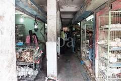 H504_3542 (bandashing) Tags: avian chicken hens poultry market live animal cage caged amborkhana shops shopping sylhet manchester england bangladesh bandashing aoa socialdocumentary akhtarowaisahmed