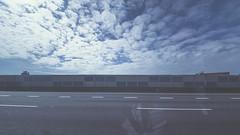 DSC_4572 (Photographer Wuchi) Tags: taiwan taipei traveler travel future life freedom free sky sunset summer sun street skyline sigma s124 d750 design model cloudy                  sunrise green