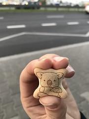 #koala #cookie (KW4DR4T) Tags: koala cookie