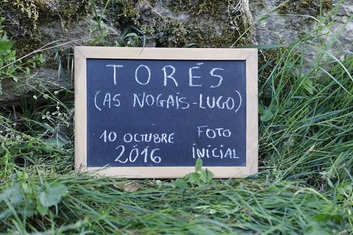 Exhumación Torés (Lugo) (5)