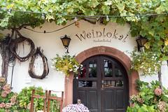 Der Muskatellerhof in Gleiszellen (PauPePro) Tags: gleiszellen weinfest wine winebar restaurant wein weinstube muskatellerhof