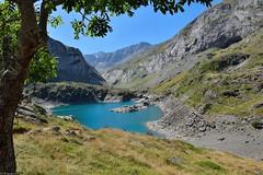 Lac des Gloriettes (Mystycat =^..^=) Tags: lacdesgloriettes barragedesgloriettes france hautespyrnes midipyrnes parcnationaldespyrnes lac eau arbre montagne gdre