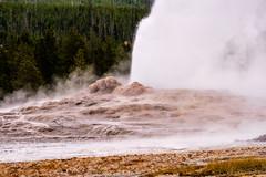 Yellowstone - Old Faiuthful (gregoryl.johnson56) Tags: uppergeyserbasin yellowstone