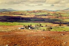 Tyn Gorlan (Missy Jussy) Tags: landscape wales fields hills sky clouds sunlight walkinglandscape nationalpark outdoor garndolbenmaen valley tyngorlan gwynedd
