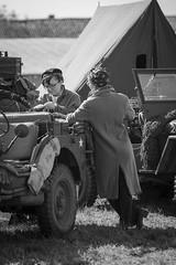 DSC07577 (regis.verger) Tags: jeep willys 1944 seconde guerre mondiale amricain char sherman cholet halftrack