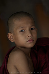 _MG_2408-le-14_04_2016-wat-thail-wattanaram-christophe-cochez (christophe cochez) Tags: burmes burma birmanie birman myanmar thailand thailande maesot myawadyy monk bonze novice religion watthailwattanaram travel voyage bouddhisme buddhism portrait