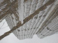 DSCN2006 (joanna leng) Tags: tower42 london puddle reflection