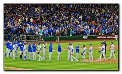 Like a Home Game (seagr112) Tags: seattle seattlemariners torontobluejays washington baseball baseballgame mlb team sport safecofield