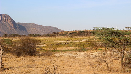 Shaba National Reserve