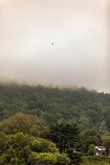 Misty Mountain Mornings  #Charleston #Mountains #Mist #Fog #Forest #Trees #Morning #Clouds #CloudPorn #Sky #SkyPorn #UrbanExplorer #Urbex #Rural #Wanderlust #CharlestonWV #WestVirginia (kallyone) Tags: trees urbanexplorer skyporn forest urbex fog cloudporn morning mountains mist westvirginia clouds rural wanderlust charlestonwv charleston sky
