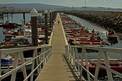Cambados, Galicia, Spain. October 2016 (Terry Phillips / Selective Imaging) Tags: cambadosspain fishingport fishingboats smallfishingport boardwalk pier
