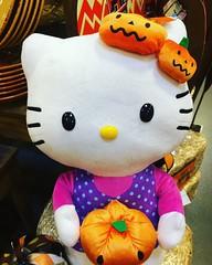 Hello Kitty with Pumpkins (booboo_babies) Tags: hellokitty stuffedanimal stuffedtoy cat autumn fall october cute