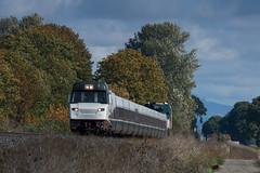Amtrak Cascades (Tom Trent) Tags: emd f59phi amtrak amtrakcascades passenger train lanecounty junctioncity oregon diesel locomotive brooklynsubdivision up unionpacific willametteriver