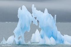 Dueling Ice Dragons - HTHTH (Alfred J. Lockwood Photography) Tags: alfredjlockwood nature landscape ice iceberg ocean pacificocean valdez alaska summer overcast