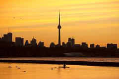 Morning Reps (cjb_photography) Tags: skylline sunshine sunrise toronto the6 torontolife torontophoto torontoclicks lakeshore lakeontario lake lakefront lakeshoreboulevard city