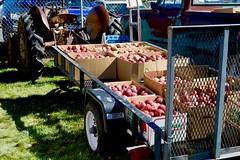 Apple Festival, New Harmony, Utah (toucanne) Tags: apple pomme tractor tracteur trailer remorque
