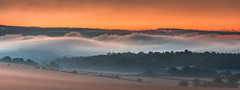Waves in a Sea of Fog (Jerry Fryer) Tags: surrey hills hogsback dawn sunrise fog inversion clouds orange trees nature sky green landscape 6d ef70300mm leefilters 6ndhard mood scenery mist