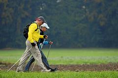 Hallwilerseelauf: Nordic Walking im Gleichschritt