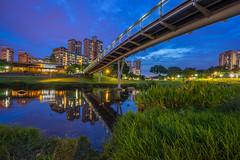 Bishan Park (BP Chua) Tags: bishan park bishanpark singapore bridge bluehour sunset cloudy blue water reflection nature hdb housing macdonalds landscape asia